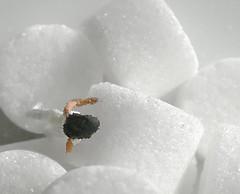 Some more sugar ? (Le.Patou) Tags: challenge macro mondays macromondays closeup fz1000 whiteonwhite white sugar compo