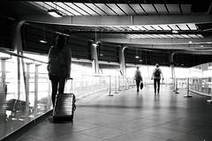 Buscando su destino... (Eloy61) Tags: pentaxespio738s pentax ilfordelta100 filmisnotdead film35mm analoguefilm light miradas airport pentaxespio ilford ilforddelta100