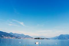 Lake Maggiore (Bephep2010) Tags: 2018 7markiii alpha borromäischeinseln borromeanislands isolasuperiore isoladeipescatori italien italy lagomaggiore lakemaggiore piedmont piemont sel28f20 see sommer sony stresa lake summer ⍺7iii baveno provinzverbanocusioossola it
