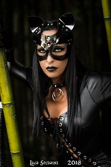 #catwoman #fantasy #cosplay #movie #games #videogames #music #japan #me #model #officialmodel #exclusivecontract #instagram #workinprogress #fashion #girl #photography #freedom #love #style #fitness #life #positivethinking #smile #motivation #prettygirl (sonia.dea) Tags: sexy prettygirl catwoman fantasy cosplay movie games videogames music japan me model officialmodel exclusivecontract instagram workinprogress fashion girl photography freedom love style fitness life positivethinking smile motivation