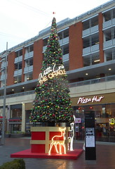 P1000702 Christmas decorations 2018 (PeaTJay) Tags: panasonic lumixtz60 leica england uk gb royalberkshire reading theoracle christmaslights