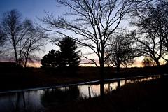 Madison, WI at Sunset (lesurovi) Tags: lightanddark creek reflection wintertrees winter trees sunset wisconsin madison nikon
