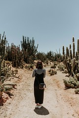 Cactus Country (Clickr1321) Tags: cactus country cactuscountry strathmerton cacti dessert asian asiangirl