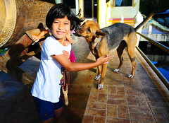 ,, Veterans Day ,, (Jon in Thailand) Tags: dog k9 child jungle themonkeytemple happygirl happydog bigdrum swamp yellow red blue orange thaismile slingshot dogtongue dogtail dogears dogeyes happyexpression veteransday november11th2018 thaichild morningsun nikon d300 nikkor 175528 pink handrail waterlily flyinghair littledoglaughedstories