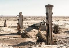 POSTS, SPURN HEAD, E YORKSHIRE_DSC_2510_LR_2.5-4 (Roger Perriss) Tags: kilnsea spurn d750 beach sand posts shadows nets rust