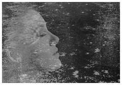 ella in the rain (spencerrushton) Tags: spencerrushton spencer rushton canon canonlens canonl canon5dmkiii 5dmkiii 5dmk3 raw rain 24105mm canon24105mmlf4 portrait pose purpleport model manfrottotripod manfrotto photomerge lightroom photoshop beautiful blackandwhite black bw woman white monochrome monocrome girl lady female femalemodel