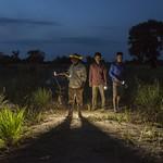 Feed the Future Cambodia - Rice Field Fisheries Phase II. thumbnail