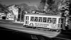 I love the Eléctricos :) (Hendrik Lohmann) Tags: streetphotography street tram travel lisboa lissabon lisbon love blackandwhite bwstreet bnw bw monochrome people urban nikondf nikonphotographer