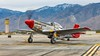 """North American P-51D Mustang """"Bunny"""" (dschultz742) Tags: 01052019 airplane palmspringsairmuseum aircraft nikkor nikon outdoor veficle northamericanp51dmustang bunny tomnightingale nikonafs283003556gedvr"""