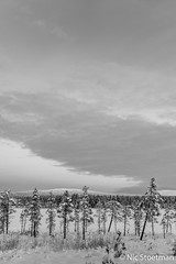 Äkäslompolo-15 (Nic Stoetman) Tags: winter lapland finland cold snow bw blackandwhite zw natur natuur outdoor äkäslompolo tree hill lake forrest north landscapephotography