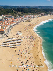 Portugal 2017-9052229 (myobb (David Lopes)) Tags: 2017 adobestock allrightsreserved europe nazare portugal aerialview beach beachumbrella copyrighted day daylight enjoyment highangleview leisureactivity ocean outdoors sand sea sunbathing tourism traveldestination umbrella vacation watersedge ©2017davidlopes
