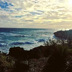 #wild #winter #sea #bermuda (IslandZal) Tags: instagram ifttt