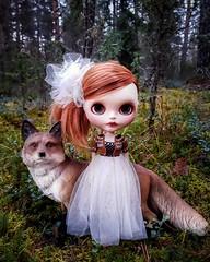 Lilja found herself a new friend! A huge (or is it small?🤔) fox  . #blythe #customblythe #customdoll #blythedoll #crochet #crochetdollclothes #dollclothes #blytheclothes #dolliina (Dolliina) Tags: blytheclothes blythe crochet dolliina customblythe customdoll crochetdollclothes blythedoll dollclothes