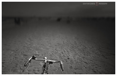 Teach me the way (GP Camera) Tags: nikond80 nikonafsdx1855mmf3556gvr minimalism minimalismo bicycle bicicletta handlebar manubrio beach spiaggia sand sabbia horizon orizzonte light luce shadow ombra lighteffects effettidiluce textures trame silence silenzio solitude solitudine void vuoto depthoffield profonditàdicampo viewpoint puntodivista details dettagli vignetting bw biancoenero monochrome monocromo focus messaafuoco bokeh sfocato whiteframe cornicebianca italy italia emiliaromagna darktable gimp opensource freesoftware softwarelibero digitalprocessing elaborazionedigitale