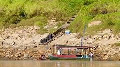 Anlegestelle Cayman Lodge (Sanseira) Tags: südamerika peru anlegestelle steg cayman lodge rio tambopata