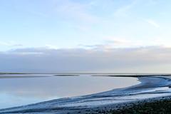 Cumbrian coastline - Leven estuary (timnutt) Tags: woodland xt2 conishead coastline priory coastal fuji cumbria coast 35mm fujifilm 35f2wr
