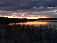 804 vilhelmina (What about the Arctic 3) Tags: 2011 sverige sweden vilhelmina