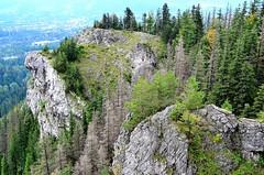 From Nosal (marektomczuk) Tags: zakopane poland tatra tatry