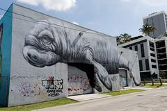 Manatee (OliveTruxi (2 Million views Thks!)) Tags: arturbain manatee miami roa streetart urbanart wallart wynwood wynwoodwalla florida unitedstates