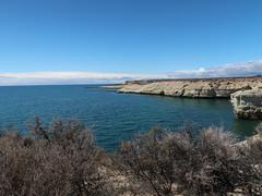 2018-102525 (bubbahop) Tags: 2018 antarcticatrip puertomadryn argentina punta loma natural reserve