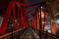 《親愛的,多希望你在》 (西島 輝) Tags: 美景 夜景 彰化 台灣 taiwan 秋 fall 落葉 film 詩 現代詩 travel nature view photography
