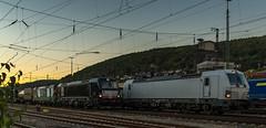1_2018_09_28_Gemünden_6193_247_ELOC_6193_877_DISPO_&_6193_224_ELOC_WIENER_LOKALBAHNEN_CARGO_mit_Containerzug-2 (ruhrpott.sprinter) Tags: ruhrpott sprinter deutschland germany allmangne nrw ruhrgebiet gelsenkirchen lokomotive locomotives eisenbahn railroad rail zug train reisezug passenger güter cargo freight fret karlstadt gemünden bayern unterfranken mainspessart eloc wlc 1216 6193 dispo mrce ell wiener lokalbahnencargo roland spedition logo natur outddor