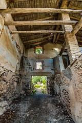 Saliendo del pasado (Ricardo Pallejá) Tags: old viejo abandono abandoned antiguo urbex urbandecay urbanexploration ruinas rural decay nikon tokina1116