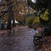 Rainy morning in Kampa Park, Prague