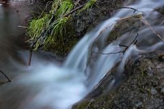 Patak (Péter Vida) Tags: watercourse shutter shutterspeed photo december winter patak záridő hosszúzáridő tél waterfall grass