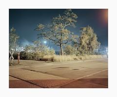 Untitled, 2018 (Darius Urbanek) Tags: 120 65mm 6x7 kodak analog mediumformat film portra400 mamiya7 color longexposure night tree industry decay road