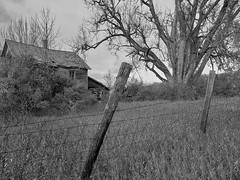 The Black & White Version (nelhiebelv) Tags: fence abandoned house decaying