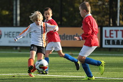 "HBC Voetbal • <a style=""font-size:0.8em;"" href=""http://www.flickr.com/photos/151401055@N04/45677543632/"" target=""_blank"">View on Flickr</a>"