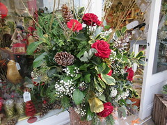 Friday, 21st, Christmas flowers IMG_0947 (tomylees) Tags: witham essex december 2018 21st friday project 365