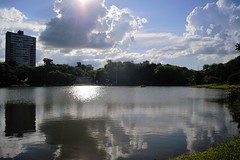 DSC_3748 (2) (Proflázaro) Tags: brasil goiás cidade jataí parque parqueecológicodiacuy lago lagodiacuy bosque edifício edifícioresidencial arquitetura engenharia reflexo sol tranquilidade brilho natureza ecologia nikond3100 viagem