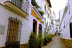 Calle Sevilla (portalealba) Tags: cómpeta axarquía málaga andalucía españa spain portalealba canon eos1300d 1001nights 1001nightsmagiccity 1001nightsmagicwindow