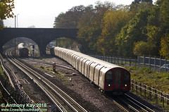 91187_9-11-2018 (LinesideSouthEast) Tags: 1992stock 91187 autumn autumnal britain british bush bushes centralline england english gb greatbritain london londonunderground lu rail railroad railway railways sunny surfaceline thirdrail track tracks train trains transport uk unitedkingdom