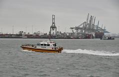 Luna (Hugo Sluimer) Tags: nlrtm onzehaven portofrotterdam port haven nederland zuidholland holland nikon nikond500 d500