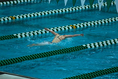 142A1127 (Roy8236) Tags: gmu american old dominion swim dive