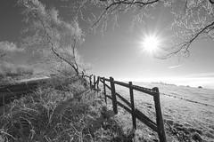 OnTheVerge (Tony Tooth) Tags: nikon d7100 sigma 1020mm wideangle frost snow winter wintersun sunlight bw blackandwhite monochrome gunhill meerbrook staffs staffordshire staffordshiremoorlands