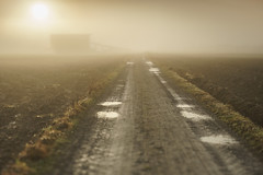 Into the unknown (Helena Normark) Tags: fog mist dreamy vanishingpoint tractorroad barn leinstrand leinstrandmarka trondheim sørtrøndelag norway norge sonyalpha7ii a7ii 50mm lensbaby edge50 lensbabyedge50 lensbabylove seeinanewway