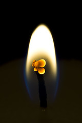 Candle Wick (steve_whitmarsh) Tags: macro closeup art candle flame fire blackbackground black orange blue topic abigfave