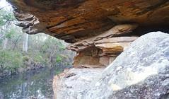 Dogtrap Creek_1 (Tony Markham) Tags: dogtrapcreek tributary bargoriver tahmoorgorge tahmoorcanyon cliffs sandstone cave overhang mermaidspool