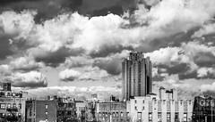 DSC_4280-Edit (Diallo Jamal) Tags: nyc newyork bronx bedfordpark rooftop cityscape skyline