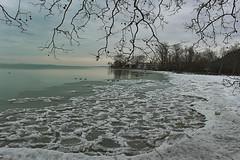 Téli Balaton (Péter Vida) Tags: winter ice scenery natural water freeze tél jég természet balaton víz fagy bough ág tájkép snow hó balatonboglár