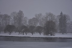 Lumi Rakveres (anuwintschalek) Tags: nikond7200 18140vr talv winter january eesti estland estonia rakvere lumi schnee snow 2019 lumesadu tuisk schneefall snowfall park tiik pond teich jää eis ice