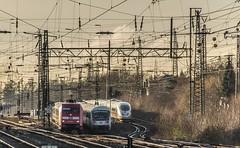 45_2019_01_18_Gelsenkirchen_Schalker_Verein_6101_093_DB_mit_IC ➡️ Wanne-Eickel_6101_054_DB_mit_IC ➡️ Essen_DB_ICE (ruhrpott.sprinter) Tags: ruhrpott sprinter deutschland germany allmangne nrw ruhrgebiet gelsenkirchen lokomotive locomotives eisenbahn railroad rail zug train reisezug passenger güter cargo freight fret schalkerverein schalker abrn atlu db erb rbh rpool sbbc vl 0077 0275 0422 0426 0429 0650 0826 1232 1273 3294 4482 6101 6145 6146 6185 6189 6193 9110 re rb sbahn mond habitat hunde logo natur outdoor graffiti