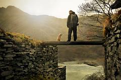 Love across the gap. Tog and dog. (PentlandPirate of the North) Tags: dinorwic snowdonia slate quarry gwynedd bridge dinorwig man dog borderterrier northwales toganddog