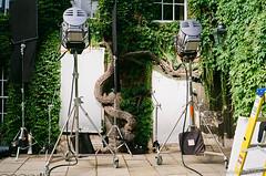 20180820_Endeavour_S6E1_Punting_M6_Superia200_34_web (Bossnas) Tags: 2018 35mm endeavour film filmdev filming fuji leica m6 noritsu oxford s6e2 superia200 voigtlander