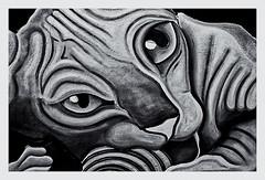 Pentax Auto 110 (1978) (Black and White Fine Art) Tags: pentaxauto1101978 pentax11024mmf28 pentaxmini pentax aristaedu100 110format formato110 smallformat formatopequeño gato cat sanjuan oldsanjuan viejosanjuan puertorico bn bw littledoglaughednoiret