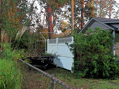 P9190813 (photos-by-sherm) Tags: hurricane florence recovery trees debris chain saws cutting wilmington nc north carolina coast fall